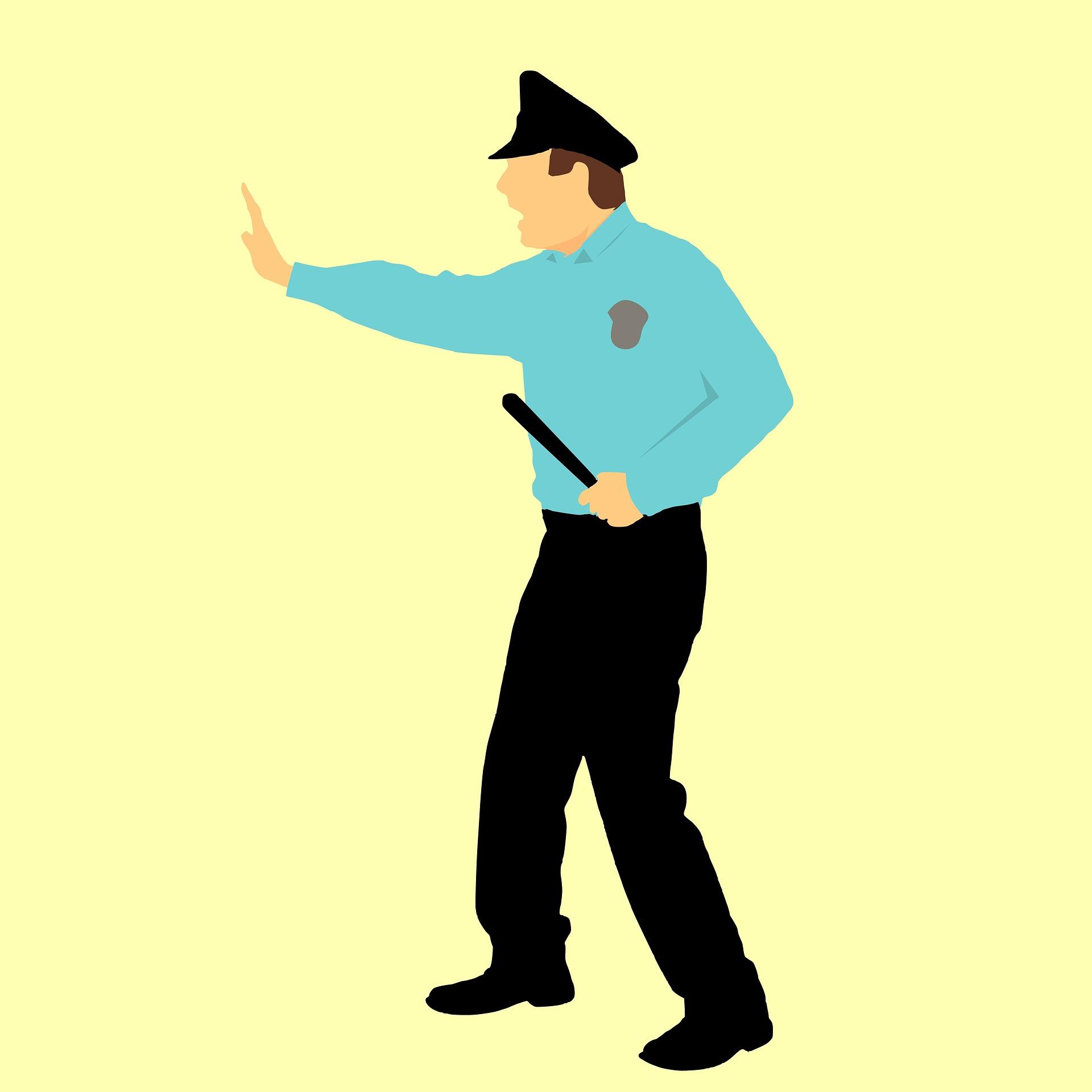 funciones de un vigilante de seguridad privada